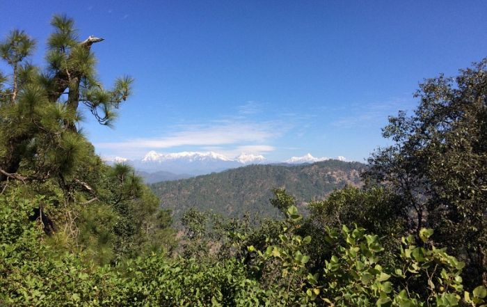 View from near Binsar © Richard Baines