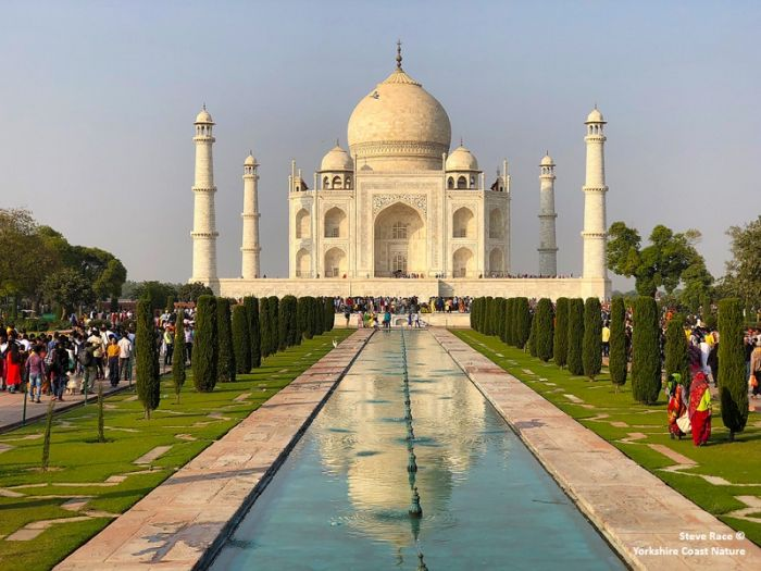 The Taj Mahal © Steve Race