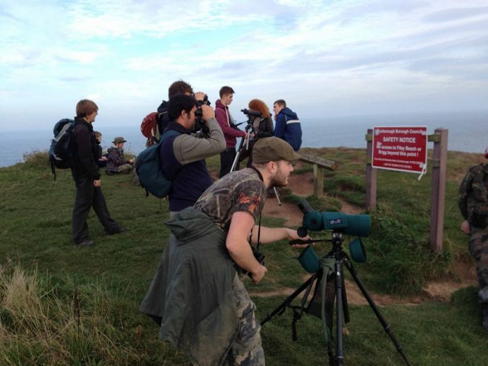Birding Flamborough Headland on a free migweek walk © Richard Baines