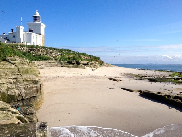 The lighthouse on Coquet photo by RSPB